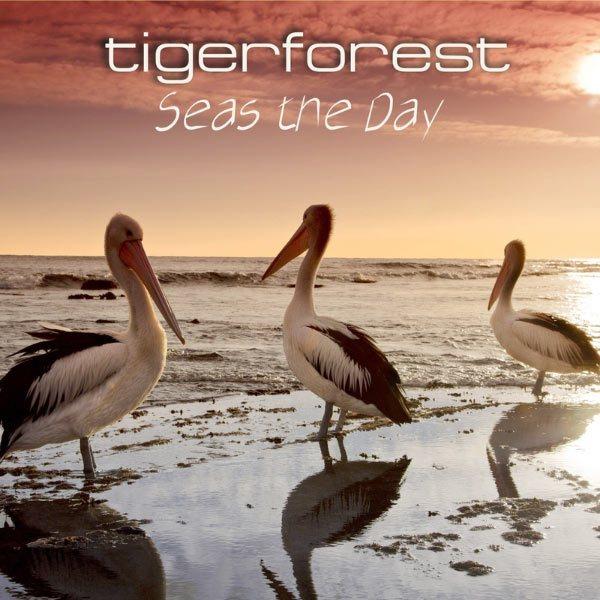 مجموعه کامل پروژه موسیقی Tigerforest