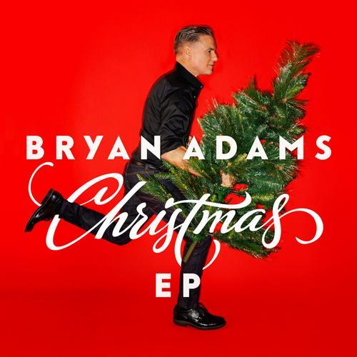 فول آلبوم برایان آدامز (Bryan Adams)