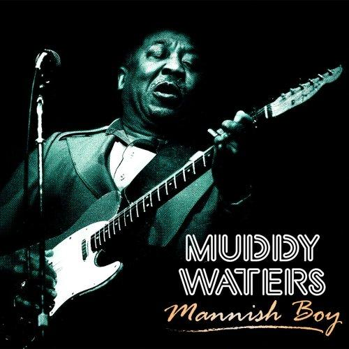 فول آلبوم مادی واترز (Muddy Waters)