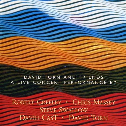 فول آلبوم دیوید تورن (David Torn)
