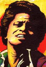 فول آلبوم جیمز براون (James Brown)