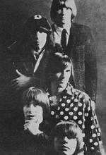 فول آلبوم گروه The Blues Magoos