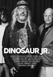 فول آلبوم گروه Dinosaur Jr
