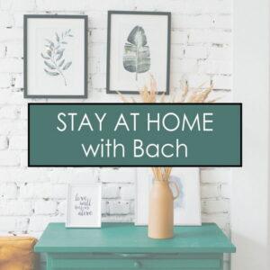 آلبوم موسیقی Stay at Home with Bach اثری از یوهان سباستیان باخ (Johann Sebastian Bach)