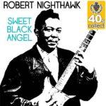 فول آلبوم رابرت نایتهاوک (Robert Nighthawk)