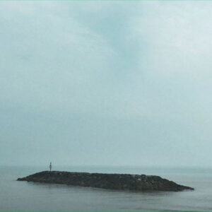 آلبوم موسیقی Seafields اثری از موس کاورد تکنولوژی (Moss Covered Technology)