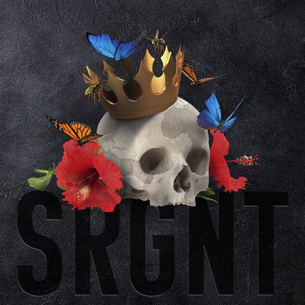 آلبوم موسیقی Srgnt اثری از د هیت هاوس