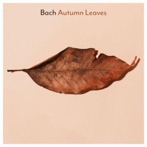 آلبوم موسیقی Bach Autumn Leaves اثری از هنرمندان مختلف
