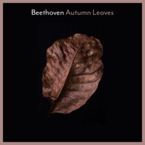 آلبوم موسیقی Beethoven Autumn Leaves اثری از هنرمندان مختلف