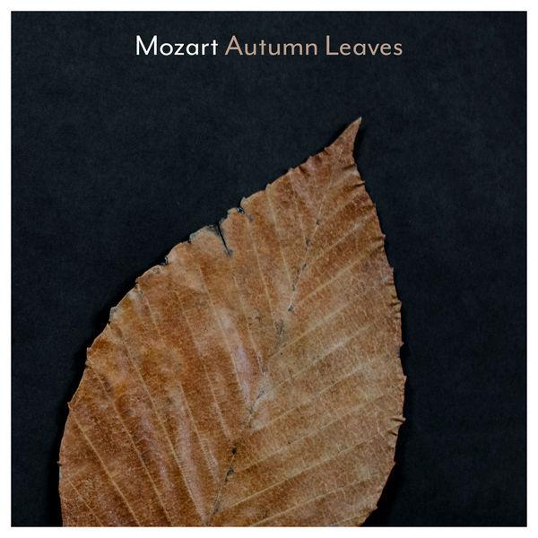 آلبوم موسیقی Mozart Autumn Leaves اثری از هنرمندان مختلف